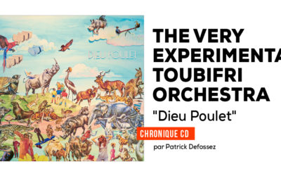 The Very Experimental Toubifri Orchestra